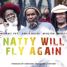 Natty-Will-Fly-cover_web